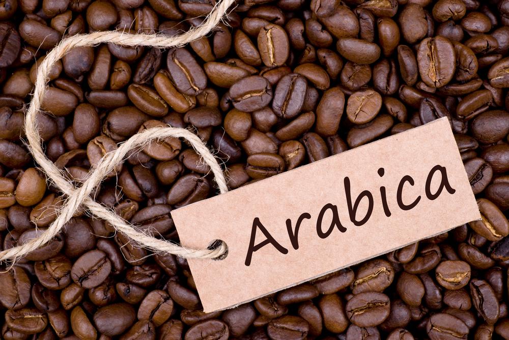 Định nghĩa về cà phê arabica - AZ Coffee